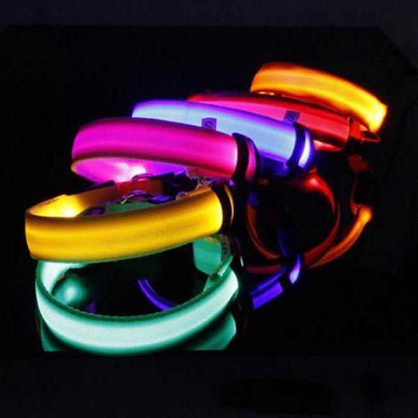 קולר לכלבים LED זוהרים בחושח