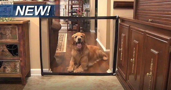 שער בטיחות רשת לכלבים