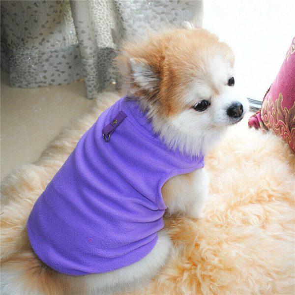 זיקט מחמם לכלב קטן