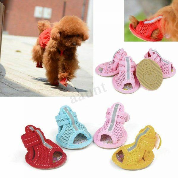 נעלי קיץ לכלבים