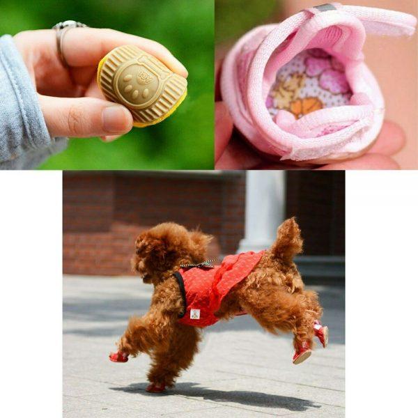 סנדלים קיץ לכלבים קטנים