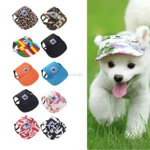 כובע לכלב קטן