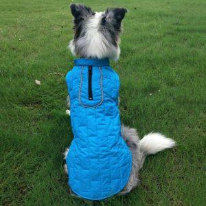 מעיל לכלבים ענקים
