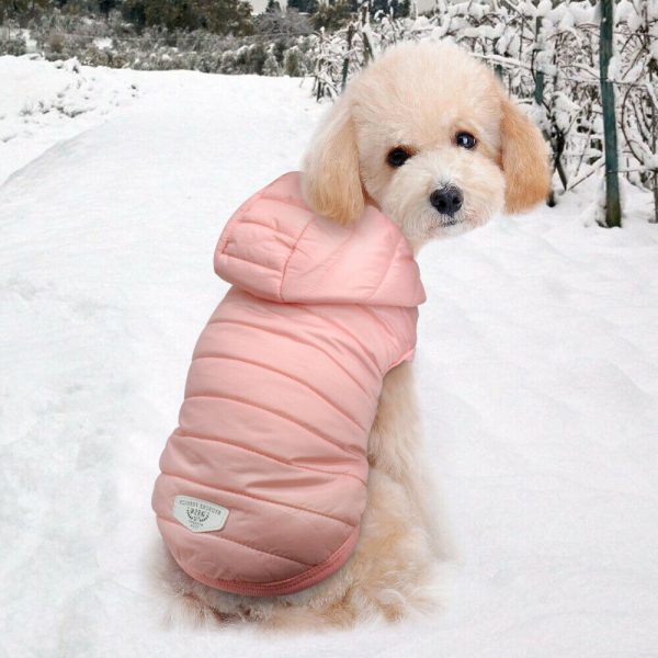 מעיל חורף עם קפוצ'ון לכלב קטן
