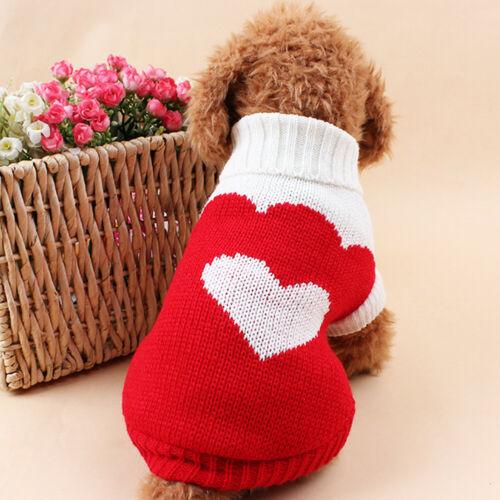 סוודר לכלב