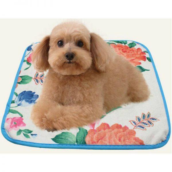 שטיחון מחמם חשמלי לכלב קטן
