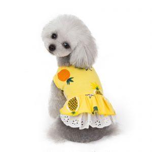 שמלת קיץ לכלבות קטנות