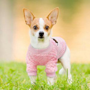 סוודר ורוד לכלב קטן