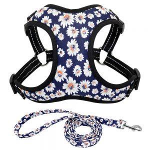 רתמה בטיחות לכלב פרחים עם רצועה וחגורת בטיחות לרכב