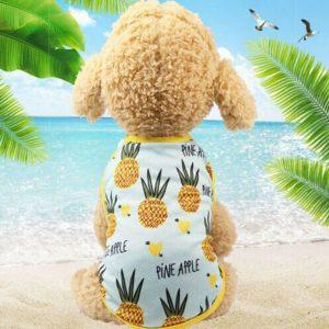 חולצת קיץ לכלב אננס