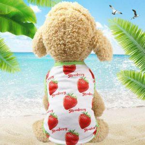 חולצת קיץ לכלב תות