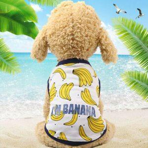חולצת קיץ בננה