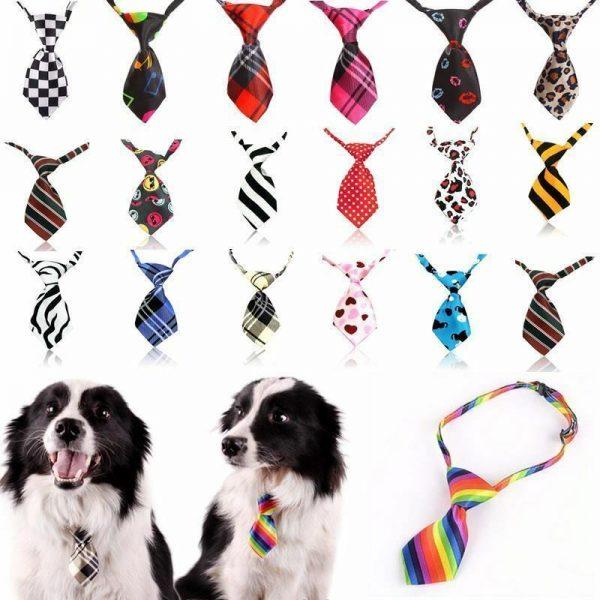עניבת אופנה לכלב