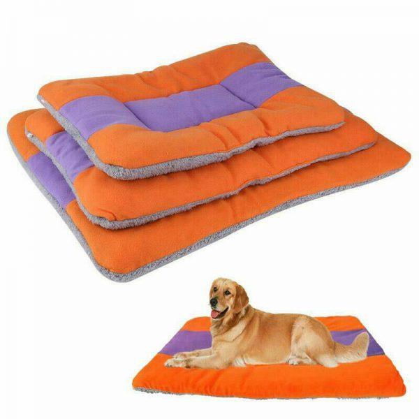 שטיחון לכלב קטן