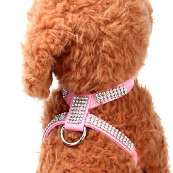 רתמה ורצועה לכלב קטן מאוד בצבע ורוד