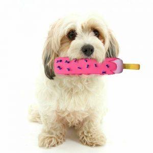 צעצוע לכלב גלידה מצפצפת