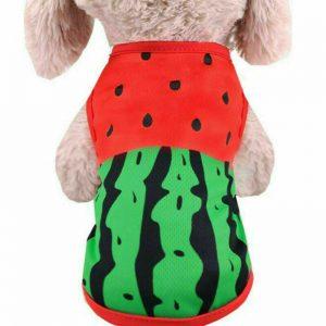 חולצת קיץ לכלב אבטיח
