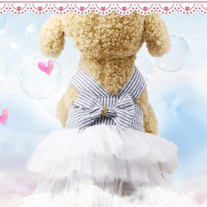 שמלת קיץ לכלבה קטנה