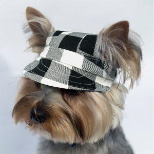 כובע לכלב משובץ