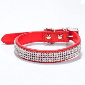 קולר ורצועה בצבע אדום לכלב קטן