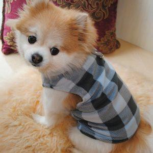 זיקט משובץ לכלב