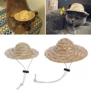 כובע קש לכלבים